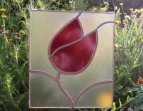 tulipan-3jpg.jpg